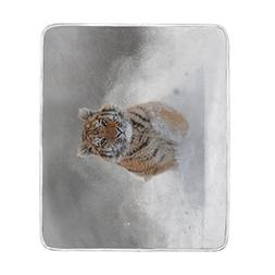 ALAZA Blankets Runing in The Snow Tiger Winter Crystal Velve